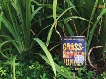 Grasshopper Jungle 01
